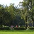 """Domenica prossima 15/11, ci vediamo al Parco di Monza (al Chiosco della Montagnetta) per il """"3000 veloce"""", come da tabella. Al termine, come d'abitudine, ci fermeremo al Chiosco per rifocillarsi […]"""